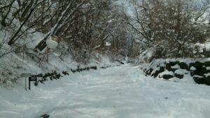 軽井沢の季節外れの大雪